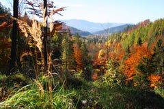 在秋天期间的Beskydy山 免版税图库摄影
