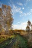 在秋天木头的土道路 库存照片