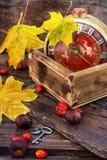 在秋天样式的老闹钟 免版税库存图片