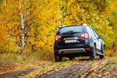 在秋天森林前面的天桥 免版税库存图片