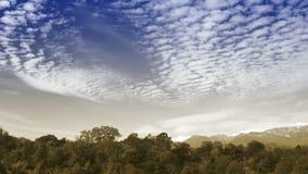 在秋天森林的时间间隔云彩 股票录像