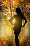 在秋天森林背景的妇女剪影 库存图片