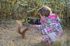 在秋天森林里小女孩喂养与坚果的一只灰鼠 免版税库存照片