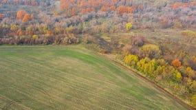 在秋天森林附近的空的农业领域 免版税库存照片
