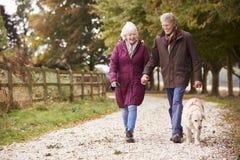 在秋天步行的活跃资深夫妇与在道路的狗穿过乡下 库存照片