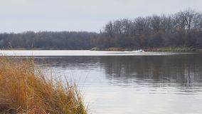 在秋天湖的汽船浮游物 影视素材