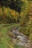 在秋天的乡下公路 免版税库存照片