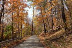 在秋天的乡下公路 免版税图库摄影