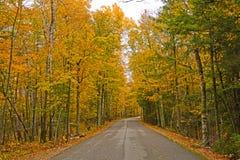 在秋天的五颜六色的农村路 免版税库存图片