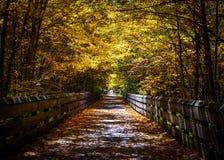 在秋天的人行道 免版税库存图片
