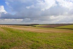 在秋天的农业 库存图片