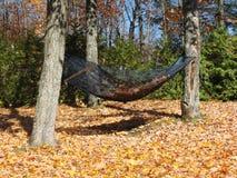 在秋天的吊床 免版税库存照片