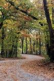 在秋天的国家足迹 库存图片