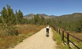 在秋天的妇女骑自行车者乘驾 免版税图库摄影