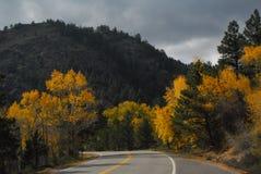 在秋天的弯曲道路 免版税图库摄影