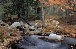 在秋天的新罕布什尔溪 库存照片