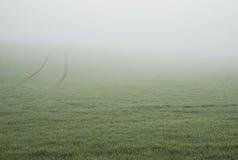 在秋天的早晨大雾在领域 图库摄影