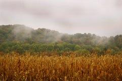 在秋天的有雾的小山在农村印第安纳 库存照片