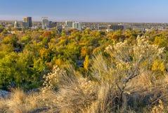在秋天的树博伊西城市 免版税库存照片