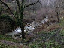 在秋天的河沿 免版税库存图片