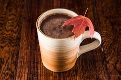 在秋天的热巧克力 库存照片