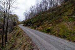 在秋天的狭窄的土路 库存图片
