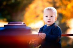 在秋天的男婴画象 库存照片