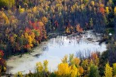 在秋天的空中风景风景视图 库存图片