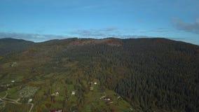 在秋天的绿色山 股票视频