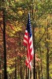 在秋天的美国国旗 库存照片