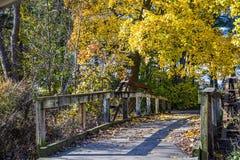 在秋天的脚桥梁 库存图片