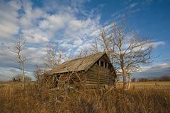 在秋天的被放弃的原木小屋 免版税图库摄影