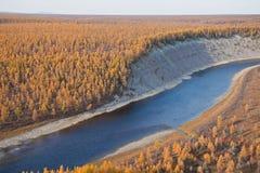 在秋天的西伯利亚河和落叶松属taiga 免版税库存照片
