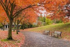 在秋天的走的和骑自行车的公园足迹 免版税图库摄影