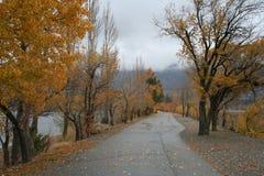 在秋天的路 库存照片