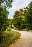 在秋天的路 免版税库存图片
