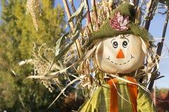 在秋天的逗人喜爱的稻草人 库存图片