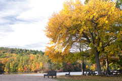 在秋天的野餐区 免版税库存图片
