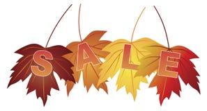在秋天的销售文本上色槭树叶子 免版税库存照片