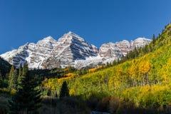 在秋天的风景褐红的响铃白杨木科罗拉多 库存照片