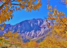 在秋天的马默斯MOUNTAIN地区 库存图片