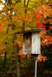 在秋天的鸟舍 免版税库存照片