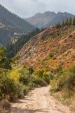 在秋天的Colorfull山 库存图片