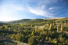 在秋天的Gredos谷 免版税库存图片