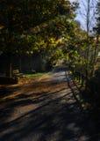 在秋天的Mendikosolo道路 免版税图库摄影