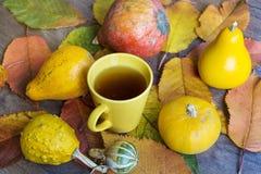 在秋天背景的茶杯 免版税库存照片