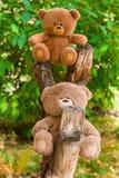 在秋天自然本底的两个玩具熊玩具 库存图片