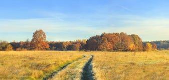 在秋天自然风景的全景在晴天 在草甸和蓝色清楚的天空的黄色和红色树 惊人的农村场面 免版税图库摄影