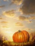在秋天草坪的大南瓜在日落天空背景 免版税库存图片