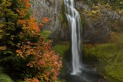 水在秋天落 库存照片